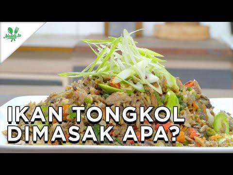 Resep-Resep Olahan Ikan Tongkol yang Harus dicoba!