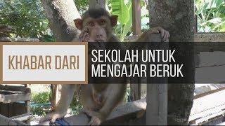 Khabar Dari Kelantan: Sekolah untuk mengajar beruk