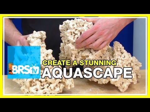 Week 11: Simple ways to create the perfect aquascape | 52 Weeks of Reefing