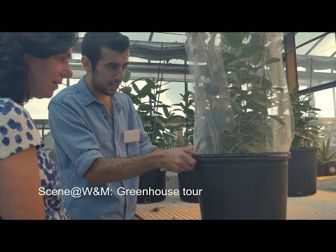Scene@W&M: Greenhouse tour
