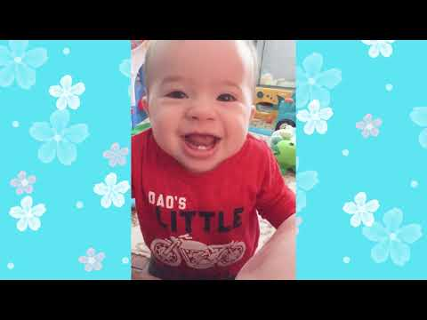 Funny Moments of Baby and Family - Cute baby videos
