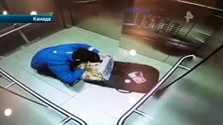 В Интернете набирает популярность ролик, героем которого стал очень голодный доставщик пиццы