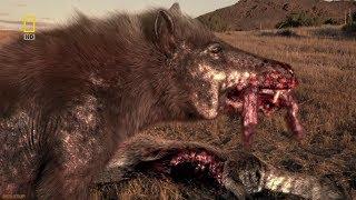 National Geographic  - Prehistoric Dinosaur Pig  - New Documentary HD 2018
