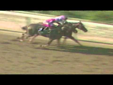 2014 Belmont Stakes - History in the Making with Steve Cauthen