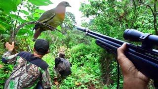 Berburu Punai/Walik di Lereng Gunung Leutik