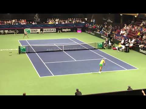 Ashleigh Barty vs. Sofia Kenin (Fed Cup)