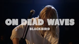 On Dead Waves - Blackbird | Live at Music Apartment