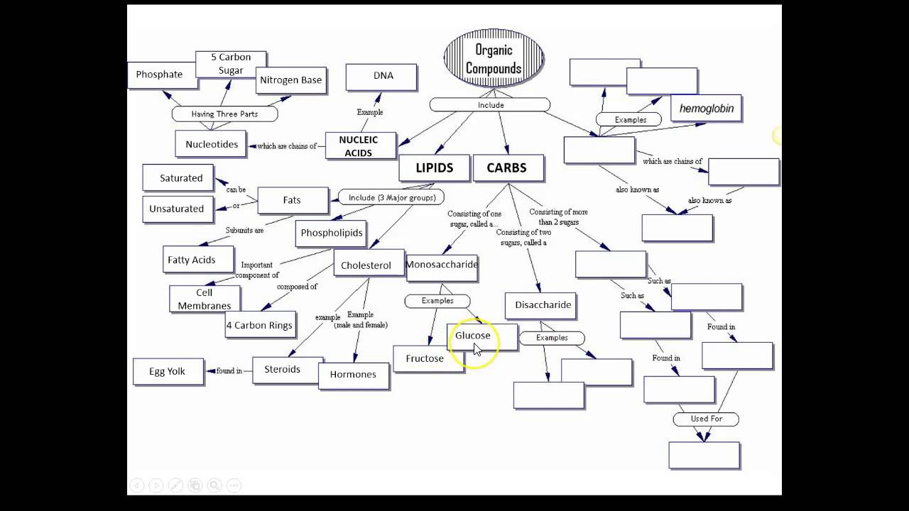 Answers - Organic Molecules Concept Map - YouTube