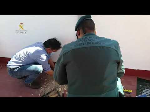 Investigación del Seprona sobre la muerte de una colonia de murciélagos en Puente Genil