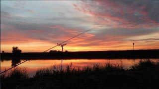 Рыбалка на фидер в июле, на нижней Москве-реке-2.(Спад жары и переход природы, на дождливый образ жизни, не подтвердил моих надежд, на улучшение клёва. Рыбка..., 2016-07-12T06:33:49.000Z)