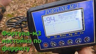 ФОРТУНА м3 налаштування металошукача за ферриту