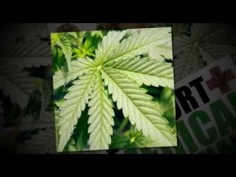 Best Medical Marijuana Deals Bakersfield California