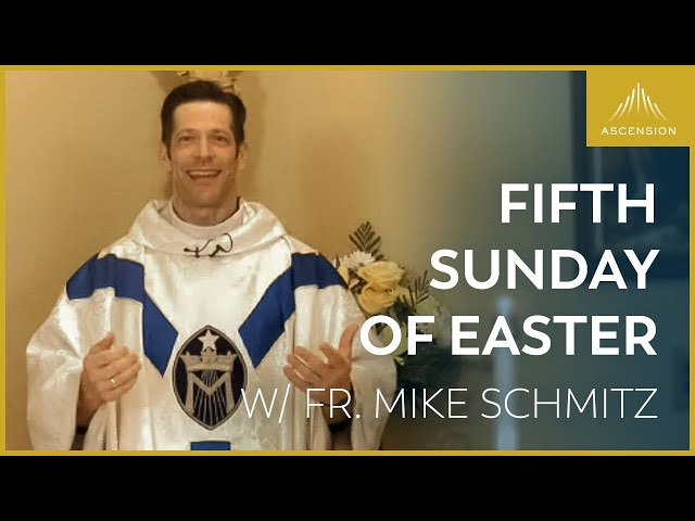 Fifth Sunday of Easter – LIVE Mass with Fr. Mike Schmitz