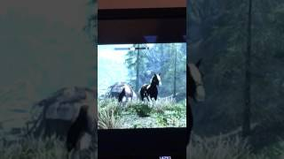 How To Dismount A Horse In Skyrim