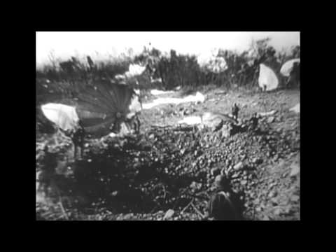 Victory in Review--AAF Combat Camera Units Weekly Digest (WWII film)