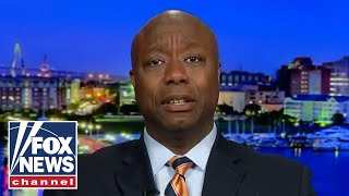 Sen. Tim Scott reacts to violent protests outside of a Trump rally in Minnesota