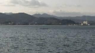 日本一のみかんの産地〜三ヶ日猪ノ鼻湖畔
