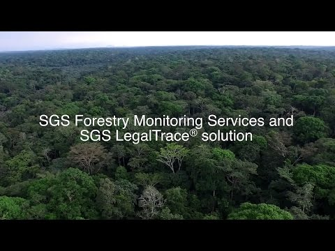 SGS Forestry Monitoring Programme