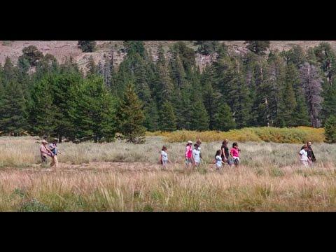 Coca-Cola North America's Environmental Sustainability Journey