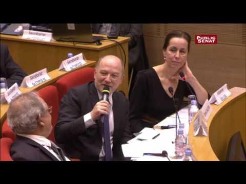 Audition de Jean-Marc Spitz (PSA) au Sénat (extrait)