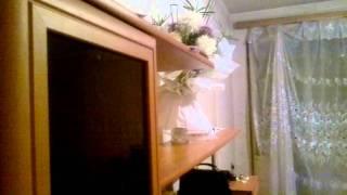Землетрясение Ташкент 20.07.11г
