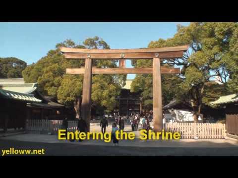 Meiji Jingu Shrine Travel Guide