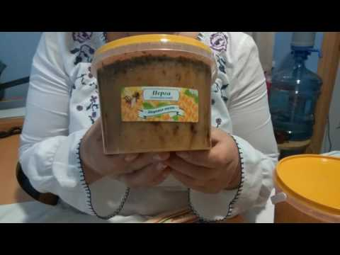 Мед с пергой купить с доставкой. Полезные свойства