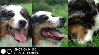 Xiaomi Mi5x Camera Review! How does the Mi 5X camera perform?