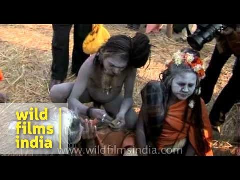 Naga sadhus desperately need match box to light Chillum - Ardh Kumbh