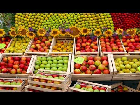 Продажа местной сельхозпродукции Утро с Губернией GuberniaTV