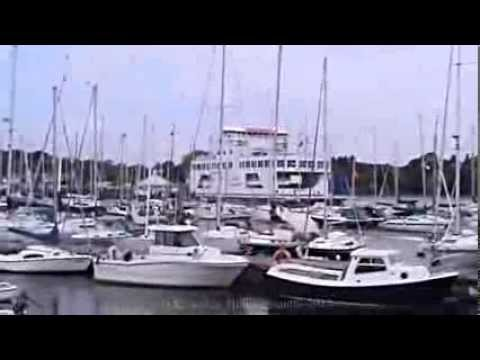 The New Forest, places to visit here, Lymington Hampshire, England  ( 9 )