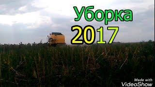 УБОРКА ПОДСОЛНУХА 2017