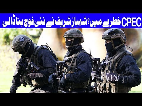 Dolphin force formed for defence of CPEC projects - Shehbaz - Headlines 10 AM - 21 Oct 2017 - Dunya
