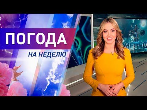 Погода на неделю с 25 по 31 мая 2020. Прогноз погоды. Беларусь | Метеогид
