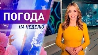Погода на неделю с 25 по 31 мая 2020. Прогноз погоды. Беларусь   Метеогид