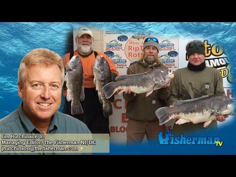 January 21 2016 new jersey delaware bay fishing report for Barnegat bay fishing report