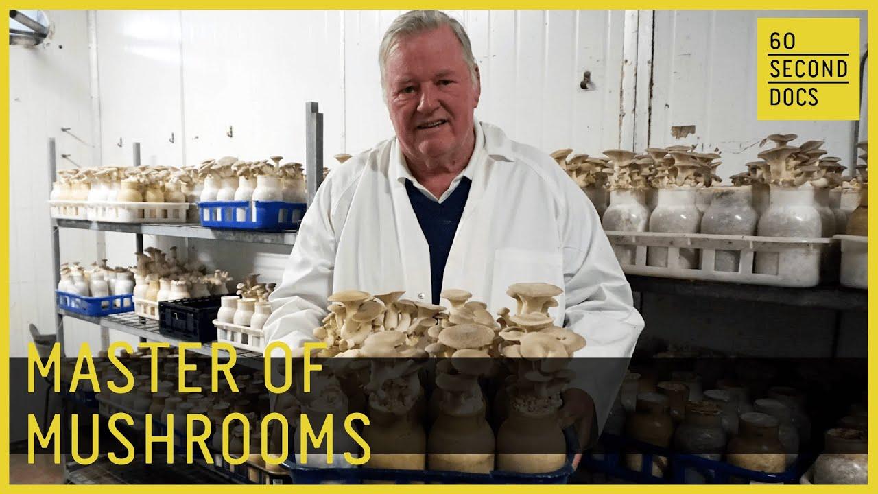 Meet Dr. Noel Arrold, Australia's Master of Mushrooms
