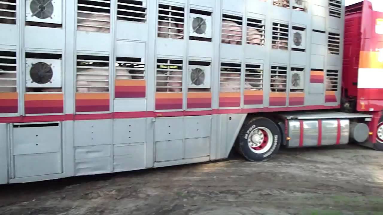 Defour Brulpijp testen by trucks4life.be