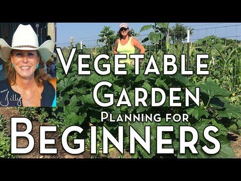planning-a-vegetable-garden-for-beginners---easy-to-grow-vegetables-for-first-time-gardener