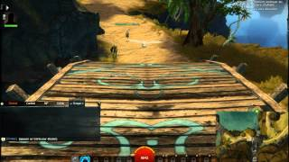 Guild Wars 2 - Testing a Potion of Transformation