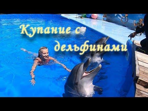 Плаваем с дельфинами. СЕВАСТОПОЛЬСКИЙ ДЕЛЬФИНАРИЙ FLIPPER🔴 КРЫМ. Отдых в КРЫМУ.