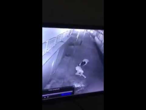 Video perampokan di Indonesia,  pontianak,  gang hijas.  Beware of robery in every small street