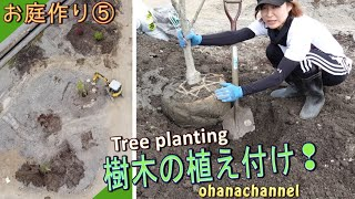 【庭作り⑤】樹木の植え付け🌳土壌改良➜庭木選び➜植樹➜支柱🌲Tree Planting❕