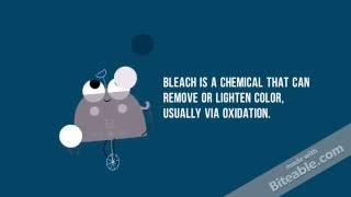 Short Explanation on Bleach