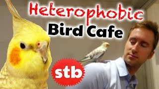 Heterophobic Bird Cafe in Tokyo, Japan // Animal Cafe with SoloTravelBlog