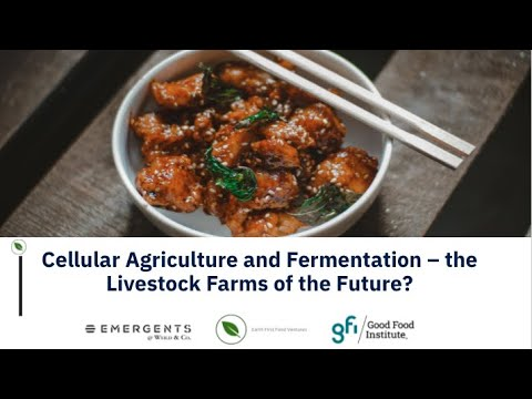 Cellular Agriculture and Fermentation – the Livestock Farms of the Future?