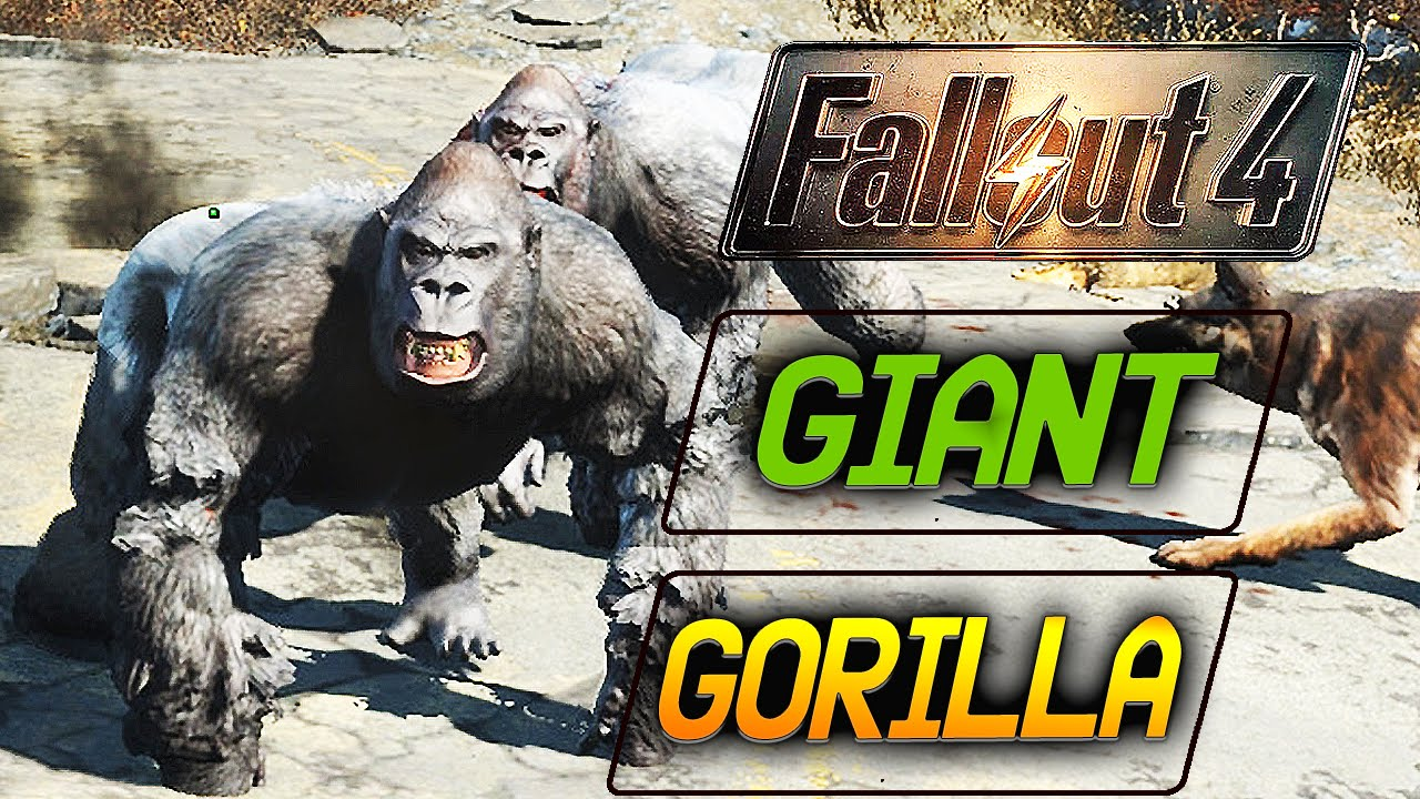 fallout 4 how to get a gorilla