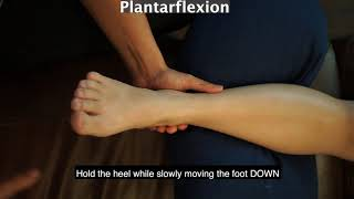 Ankle Passive Range of Motion with a Caregiver (English)
