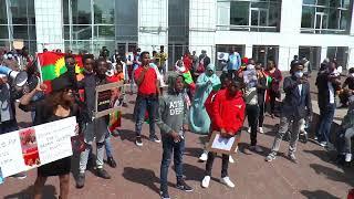 OMN: Mormii hawaasa Oromoo Netherlands