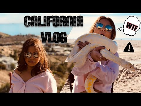 TRAVEL WITH ME - LA, SANTA MONICA, HOLLYWOOD | VARG VLOG 9